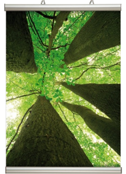 Posterschiene Poster-Line 26 mm DIN A1