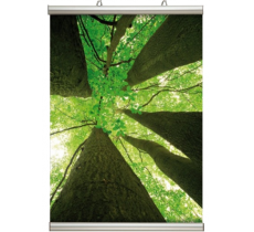 Posterschiene Poster-Line 26 mm 100 cm